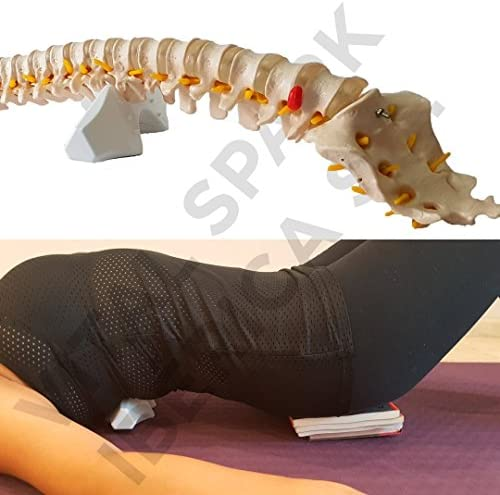 CORDUS Eficaz coadyuvante para Ciática, Hernias Discales, Escoliosis, Lumbalgia, dolores de espalda Tratamiento en casa/Garantía de satisfacción 30 días/Patentado: Amazon.es: Salud y cuidado personal