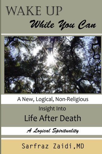 Read Online Wake Up While You Can: A New, Logical, Non-religious Insight Into Life After Death pdf