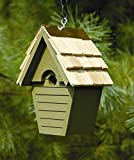 Heartwood Wren-In-The-Wind Bird House in Pinion Green