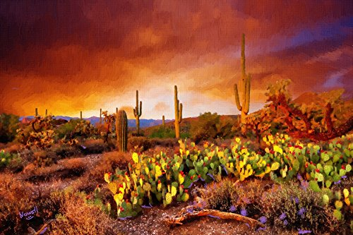Stunning Arizona Desert Cactus Sunset