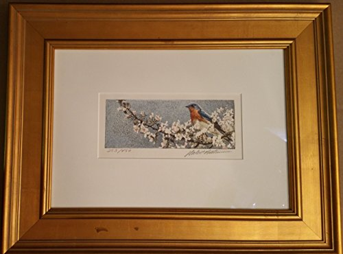 Save 20% Blossom - Robert Bateman Bluebird and Blossoms Lithograph on Canvas Limited Edition 253/450 20x16