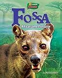 Fossa: A Fearsome Predator (Uncommon Animals)