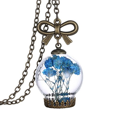 Dry Blue Flower Herbarium In Transparent Creative Lantern Memory Locket Necklace For (Galadriel Costume For Sale)