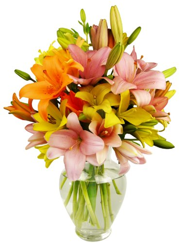 Benchmark Bouquets 12 Stem Assorted Asiatic Lily Bunch