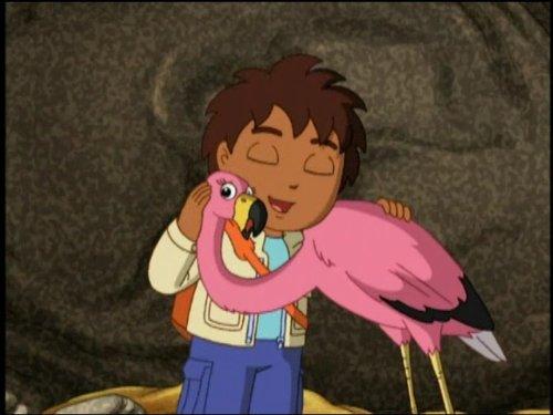 A New Flamingo Mommy - Diego Go New