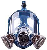 Induschoice Broad View Organic Vapor Full Face Respirator Mask Gas Mask Paint Pesticide Chemical Formaldehyde Anti Virus Respiratory Protection(Respirator +1 Pair Cartridges)