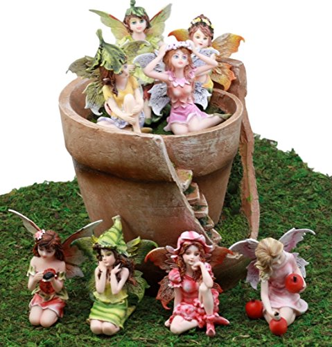 Enchanted Fairy Garden Kit (Ebros Gift Enchanted Fairy Garden Miniatures Starter Kit Broken Flower Planter Pot Cottage House With Eight Mini Fairies Figurine Set Do It Yourself Ideas For Your Home)