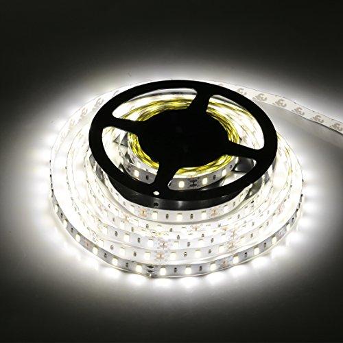 10Mm Led Lights White - 5