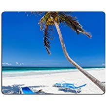 MSD Mousepad IMAGE 33976997 Coconut palm at perfect Caribbean beach in Tulum Mexico
