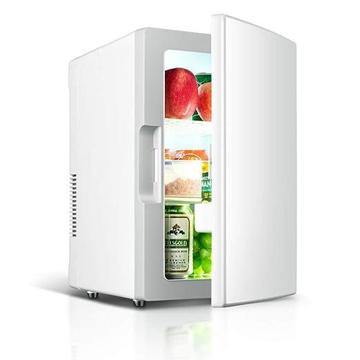 YDJGY Mini refrigerador de auto 12V 220V 10L Auto refrigerador de ...