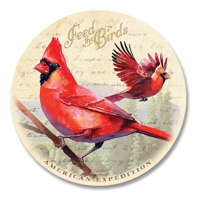 (5 Piece Cardinal Postcard Stone Coaster Set)