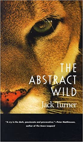 Book The Abstract Wild