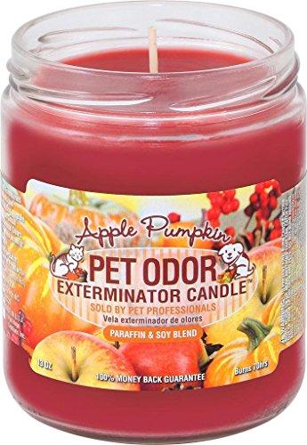 Specialty Pet Products Pet Odor Exterminator Candle, Apple Pumpkin,13 oz -
