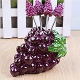 sea-junop Creative Cute Home Decor Tool Fruit Grape Kitchen Forks Holder