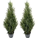 Two pre potted 3 39 spiral pond cypress for Artificial plants for outdoor ponds
