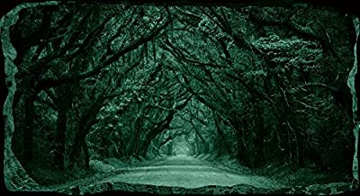 "Startonight 3D Mural Wall Art-Photo Decor Window Green Tunnel Tree-Wall Paper That Glows In The Dark- Large 32.28"" By 59.06""-Wall Mural Wallpaper for Living Room or Bedroom Nature Collection Wall Art"