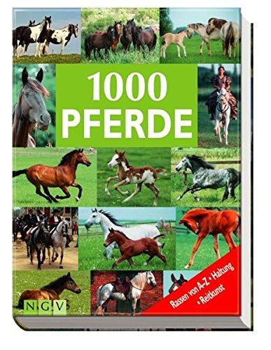 1000 Pferde: Rassen von A - Z, Haltung, Reitkunst Gebundenes Buch – 1. August 2005 Ulrike Schöber Naumann & Göbel 3625105365 MAK_9783625105367