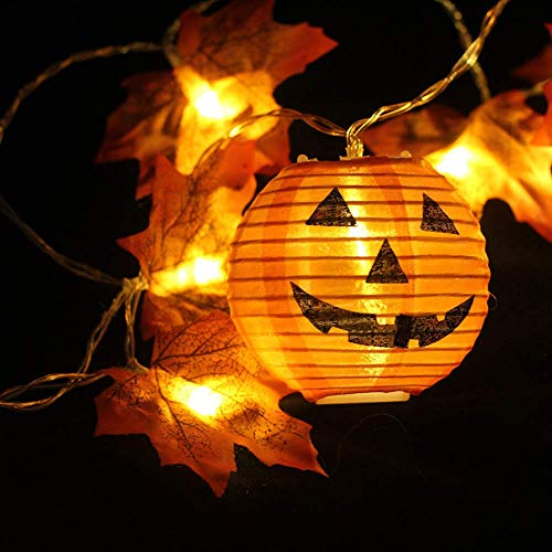 Halloween Ii Review 2019 (HaiDiKaiSi 2019 Halloween Thanksgiving Decorations Lighted Fall Garland with 2 Pumpkins, 5.5 Feet 10 LED Thanksgiving String Lights 2 AA Battery Powered, Thanksgiving Decor Home)