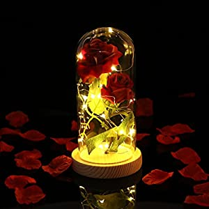 Red Silk Rose Preserved Flower Glass Dome Decoration with LED Light - Gift for Valentine's Day Anniversary Birthday 52