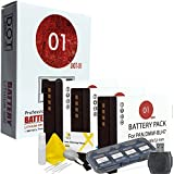 3x DOT-01 Brand Panasonic Lumix GX850 Batteries for Panasonic Lumix GX850 Mirrorless Camera and Panasonic GX850 Accessory Bundle for Panasonic BLH7 DMW-BLH7