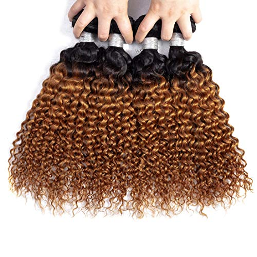 IMAYLI Ombre Brazilian Curly Hair 4 Bundles 8a Wet and Wavy Kinky Curly Ombre Human Hair Weave 2 Tone Deep Wave Hair Extensions T1B/30 Color(18 18 20 - Weave Human Ombre Hair
