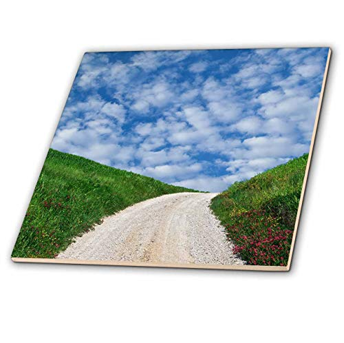 3dRose Danita Delimont - Roads - Italy, Tuscany. Dirt road to villa. - 12 Inch Ceramic Tile (ct_313706_4)