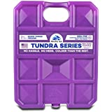 Arctic Ice Tundra Series Reusable Cooler Pack, 1.5-Pound