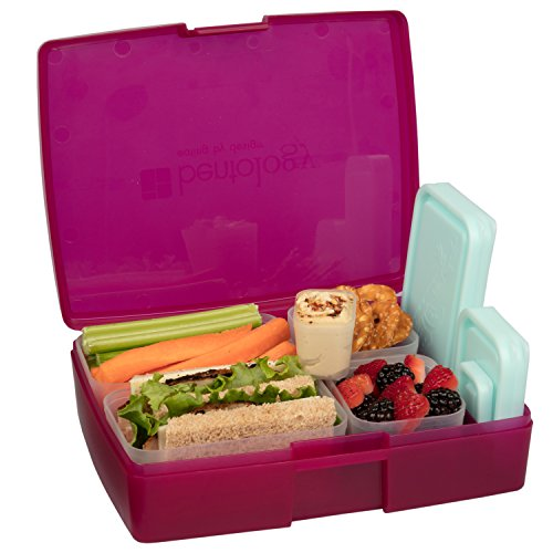 Bentology Leak proof Removable Containers Translucent product image