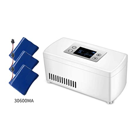 Insulinkühler A A® Mini Refrigerador PortáTil De Insulina Caja ...