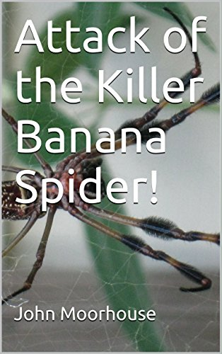 Banana Spider - Attack of the Killer Banana Spider!