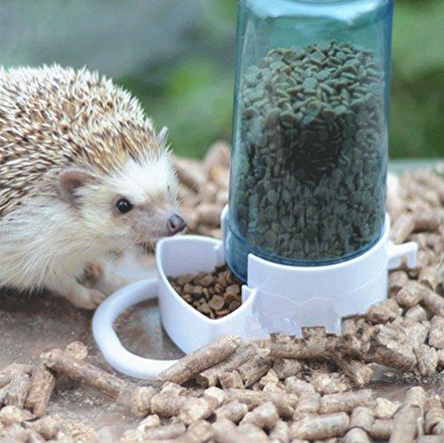 Automatic pet feeder hamster hedgepig rabbit bird small