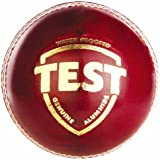SG Test Leather Ball