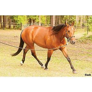 HYBRIDHalter Adjustable Horse Halters