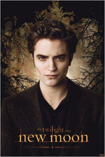 twilight poster edward