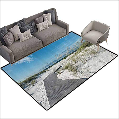 Floor Mat Home Decoration Supplies Seaside Decor Collection,Rustic Beach Pathway Heads to The Water in Florida Santa Rosa Island Summer Travel Photo,Blue Light Grey 80