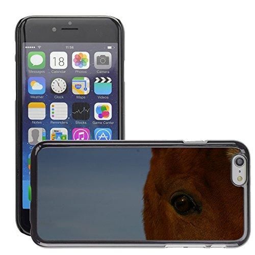 """Bild Hart Handy Schwarz Schutz Case Cover Schale Etui // M00133796 Pferd Auge Tier // Apple iPhone 6 PLUS 5.5"""""""