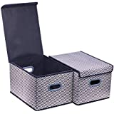 """Onlyeasy Large Cloth Storage Box with Lids - Baskets Bins Cubes Closet Shelf Nursery Baby Organizer for Home Office Bedroom, 11.8""""x15.7""""x9.8"""", Large Set of 2 Stripe, 8MXBLB2L"""