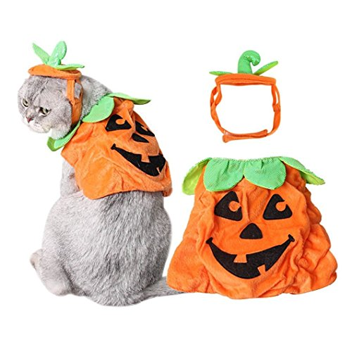 Stock Show Pet Halloween Hat & Cloth Suits, Adjustable Plush Pumpkin Poncho Party Costume Headwear Cosplay Accessories for Cats/Kitty/Small -