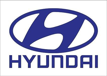 Amazon Com Neoplex Hyundai Auto Logo Traditional Flag Outdoor