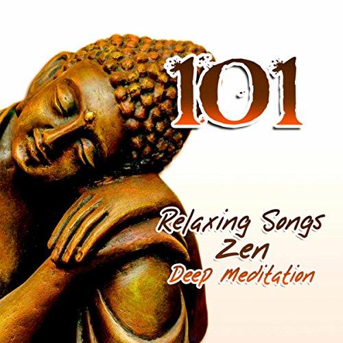 Electronic Spa - 101 Relaxing Tracks: Mindfulness Meditation Music, New Age & Nature Sounds, Guided Yoga Exercises, Reiki, Deep Sleep, Study, Chakra Healing, Asian Zen Spa Massage
