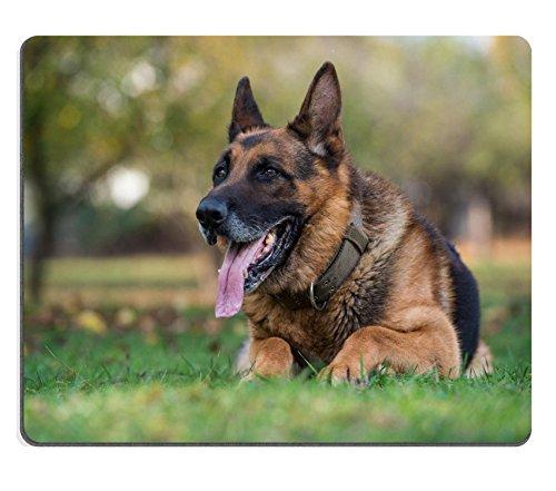 msd-natural-rubber-mousepad-image-24680218-german-shepherd-alsatian-police-dog