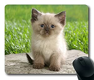 Very Cute Kitten Rectangle mouse pad Diy Design