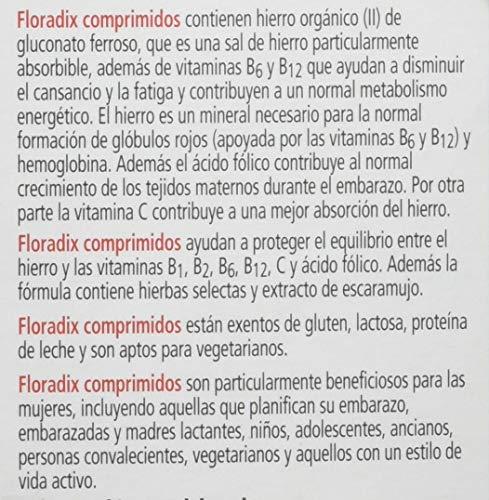 FLORADIX - FLORADIX COMPLEM ALIMENT 84COM: Amazon.es: Salud y cuidado personal