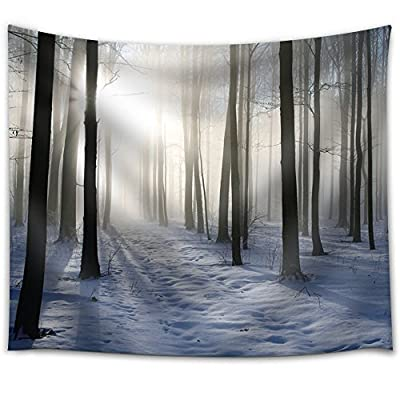 Incredible Print, Sun Shining Through a Forest Covered in Snow, With a Professional Touch