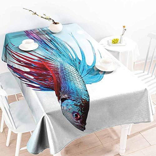 Onefzc Waterproof Table Cover,Aquarium Siamese Fighting Betta Fish Swimming in Aquarium Aggressive Sea Animal,Fashions Rectangular,W60x120L Sky Blue Dark Coral -