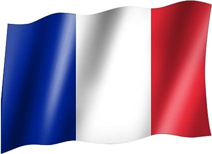 Bandera/bandera Francia Bandera/bandera con ojales (150 x 90 cm, muy buena calidad: Amazon.es: Coche y moto