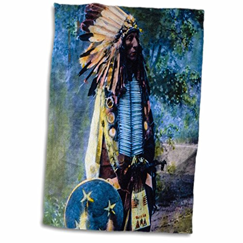 Dishes American Native (3D Rose Vintage Magic Lantern Native American Indian Sioux Chief Hand Colored Towel, 15
