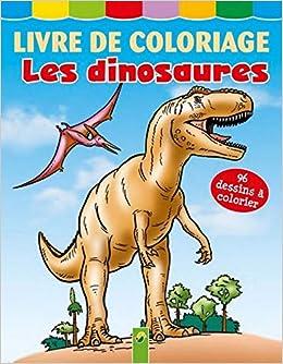 Livre Coloriage Dinosaure.Livre De Coloriage Les Dinosaures Amazon Fr Collectif Livres