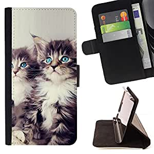 For Samsung Galaxy S3 III I9300 Blue Eyed Kittens Leather Foilo Wallet Cover Case with Magnetic Closure