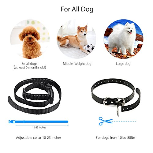 DADYPET Dog Training Collar, Rechargeable Dog Shock Collar for Dogs Waterproof Bark Collar 1000ft Remote with 3 Training Modes Beep/Vibration/Shock